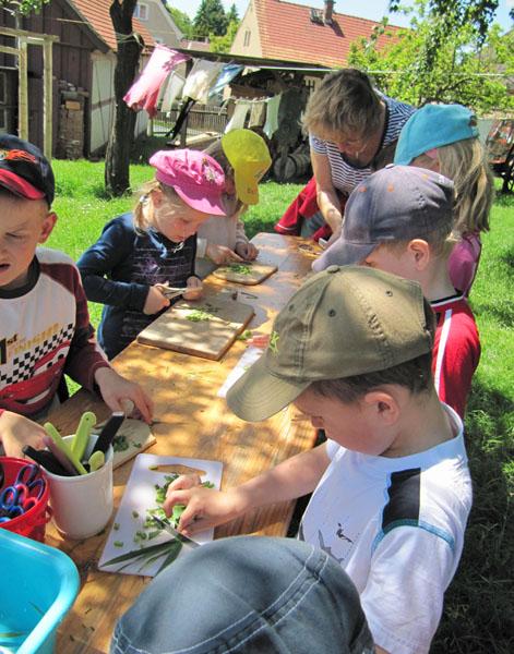 Was wächst in unserem Garten? Welche Kräuter kann man wofür verwenden? Wir vermitteln den Kindern Interessantes zur Geschichte der Kräuternutzung